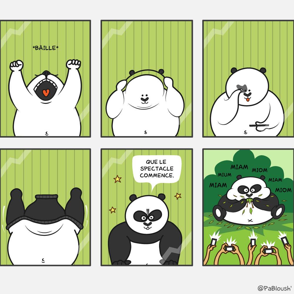 Humour Nature Images Pandas