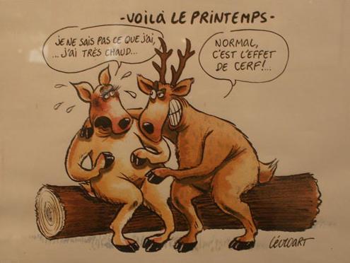 dessin humour sexe sexe gratuit français